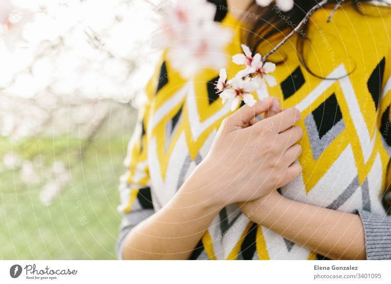 Nicht erkennbare Frau im gelben Pullover, die mit den Händen auf der Brust einen Mandelblütenzweig hält. Erstaunlicher Frühlingsanfang. Selektiver Fokus. Weiblichkeit, feministisches und weibliches Konzept.