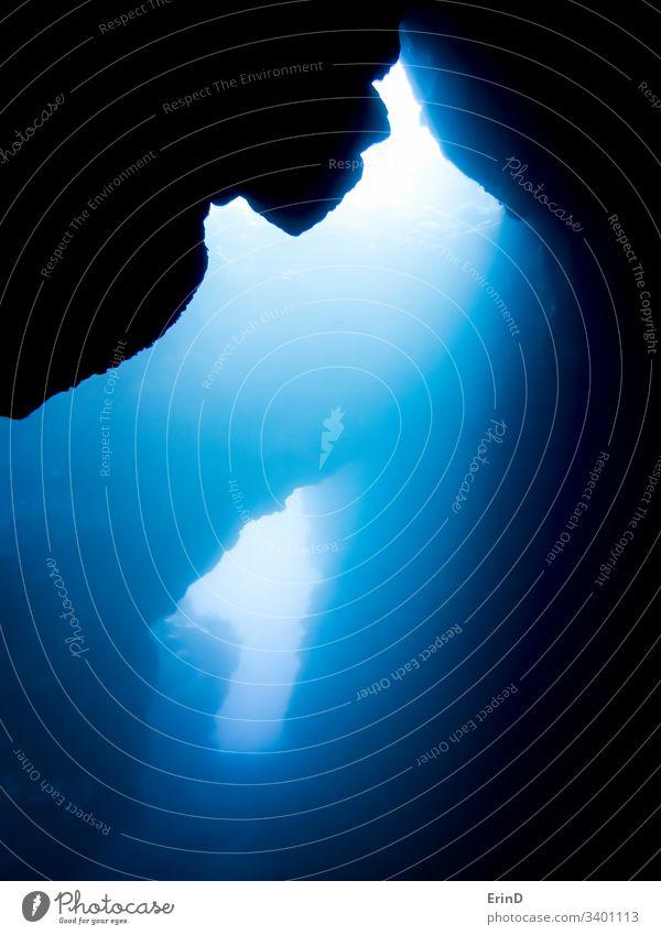 Leichte Beckons durch Unterwasser-Lavahöhlen auf Hawaii Höhle Licht Strahlen Kontrast Balken Fisch Korallen reffen unter Wasser Meer MEER tropisch marin
