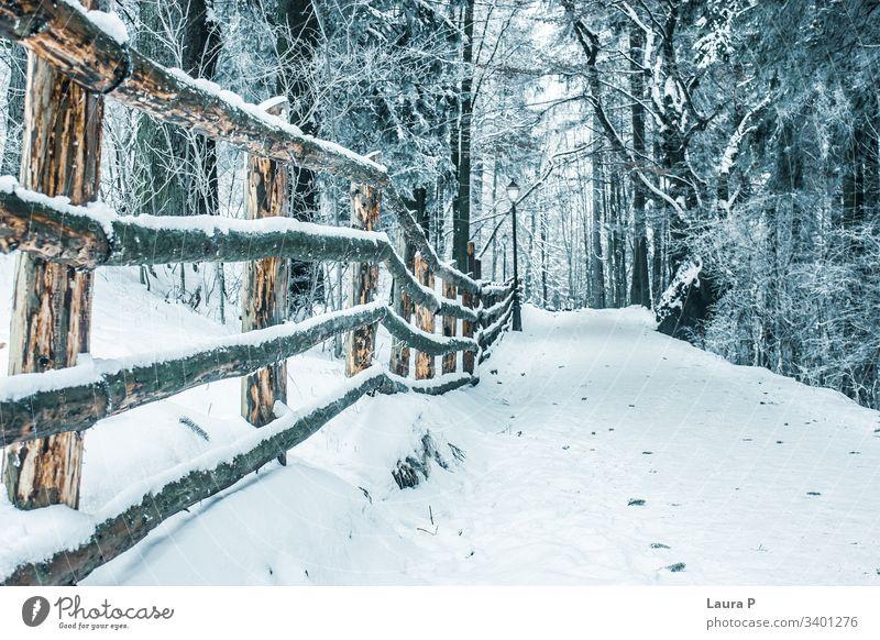 Pfad im Park im Winter, mit Schnee bedeckt Weg Holz hölzern Zaun Wald Bäume Schönheit schön Baum kalt Natur Spaziergang Niemand leer sich[Akk] entspannen ruhig