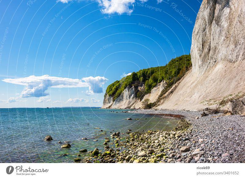 Kreidefelsen auf der Insel Rügen. Küste Ostsee Ostseeküste Bäume Steilküste Meer Himmel Wolken blau Mecklenburg-Vorpommern Stubbenkammer Sassnitz Jasmund
