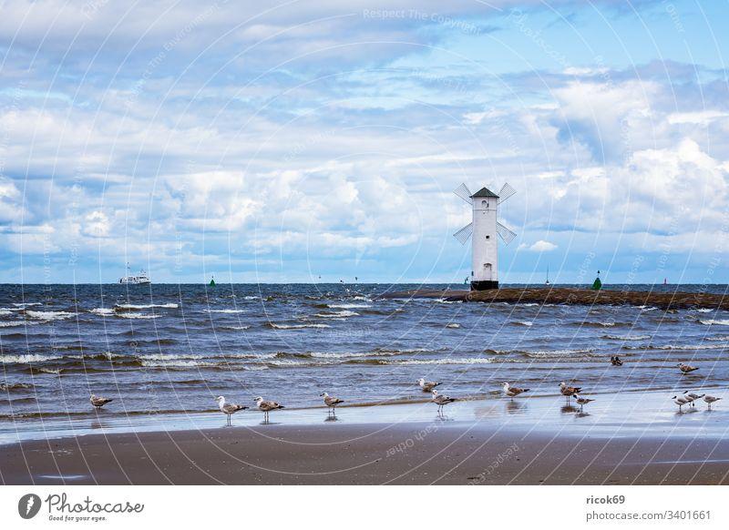 Pier an der Ostseeküste in Swinemünde, Polen Leberfleck Leuchtturm Möwe Windmühle Turm Usedom Küste swinoujscie Meer Wahrzeichen Urlaub Wasser blau Himmel Mühle
