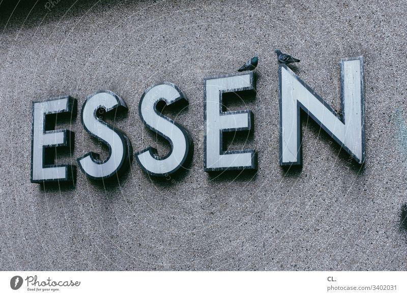 essen Vögel Vogel Taube tauben Buchstaben Typographie Wand grau trist Tristesse Hauptbahnhof Stadt Tier Menschenleer Wildtier 2 Außenaufnahme Textfreiraum oben