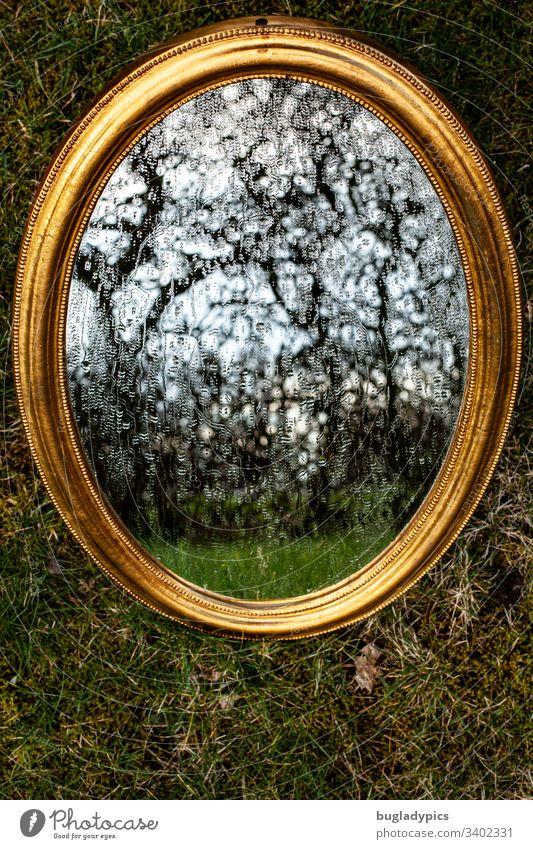 Goldener Spiegel liegt auf Untergrund aus Moos. Wassertropfen laufen über den Spiegel. Es spiegelt sich eine knorrige Hecke. Spiegelbild Spiegelung Reflektion