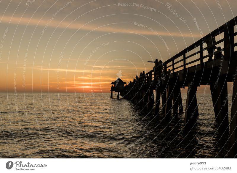 Naples Pier Sundowner Meer Küste Landschaft Strand Natur Sonnenuntergang Himmel Horizont Farbfoto Außenaufnahme Dämmerung Florida Ferien & Urlaub & Reisen