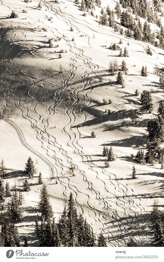Gewellte Skispuren im frischen Schnee durch frisch verschneite Landschaft. Winter Skifahren Spuren gewellt Neuschneefahren Winterzauber traumhaft Wintersport