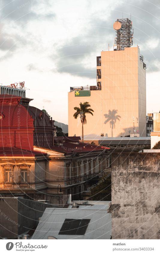 San Jose Zentrum Oper Palme Stadtzentrum Dächer Schatten Hochhaus braun weinrot grau grün weiss eng Costa Rica