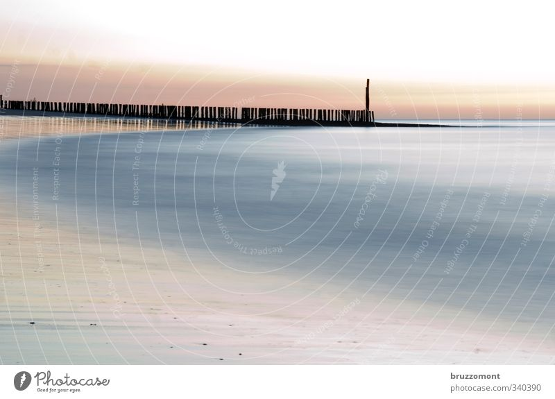 Noordzee Urelemente Wasser Küste Strand Meer Nordsee Nordseestrand Nordseeküste Sand blau rosa Coolness Buhne abstrakt Menschenleer Pastellton Gedeckte Farben