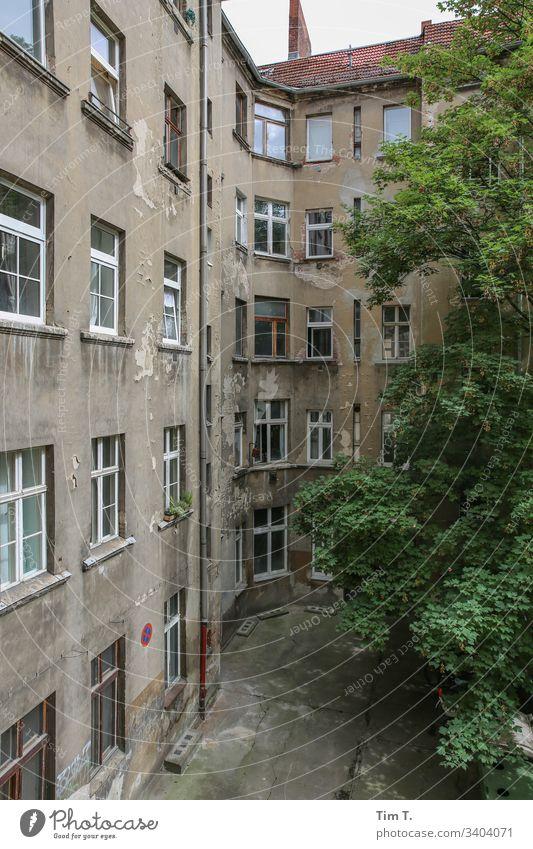 Hinterhof Berlin Prenzlauer Berg Baum Stadt Menschenleer Außenaufnahme Hauptstadt Farbfoto Altbau Bauwerk Wand Fassade Altstadt Fenster Häusliches Leben Haus
