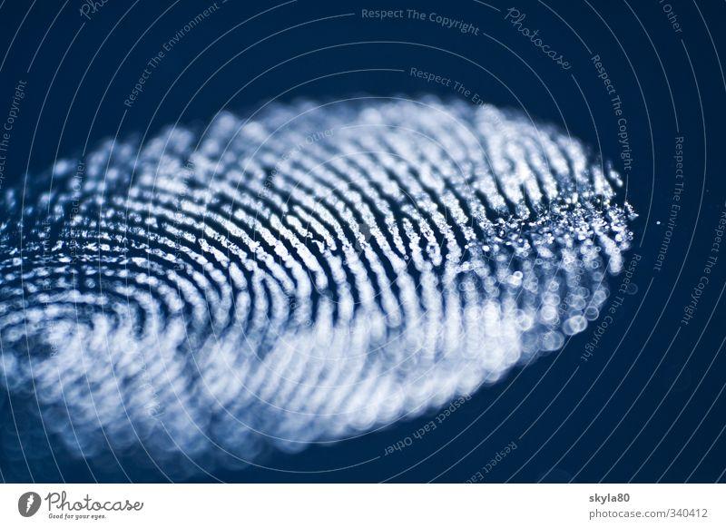 Spurensuche Fingerabdruck Abdruck identifizieren Identität Beweis Forensik Täter Mörder Kriminalität Symbole & Metaphern Mord Tod Tatort Opfer Spurensicherung
