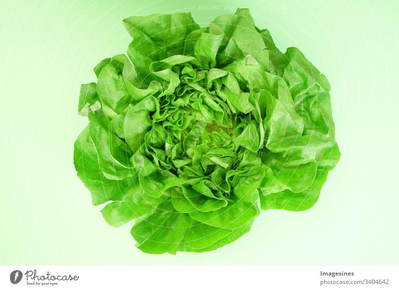 Grüner Kopfsalat - grüner Hintergrund. Kopfsalat für Salat. cut out Frisch Blatt Essen keine Menschen gesunde Ernährung Gemüse Essen und Trinken Bio Rohkost