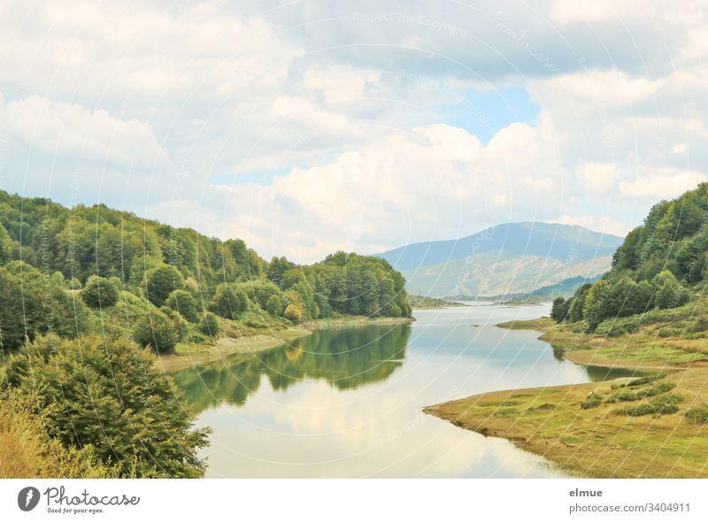 idyllische Landschaft mit Bergen und Wasser See Baum Wald Himmel Wolke relaxen Urlaub Freizeit Idylle Ferien & Urlaub & Reisen Menschenleer Sommer Seeufer