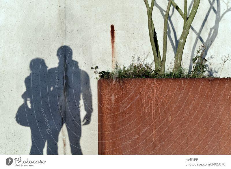 Schatten an der Wand  - Pärchen mit Baum Paar Freunde Zuneigung Liebe Liebende Empathie forever young Partnerschaft Verliebtheit zusammengehörig Glück
