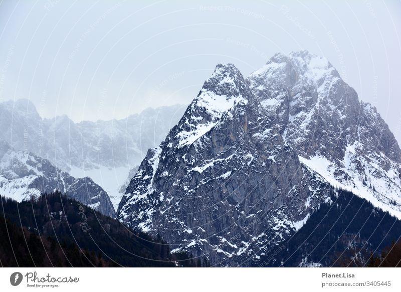 Bergmassiv Alpen Berge u. Gebirge Bergkette gebirgskette Gipfel Landschaft Natur Felsen Außenaufnahme Farbfoto Schneebedeckte Gipfel Menschenleer Umwelt Winter