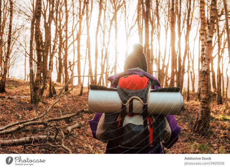 Unerkennbare Backpacker-Trekking im Herbstwald Wald Wanderer Spaziergang Abenteuer Natur Reise Ausflug reisen erkunden Person Umwelt Fernweh Freiheit Feiertag