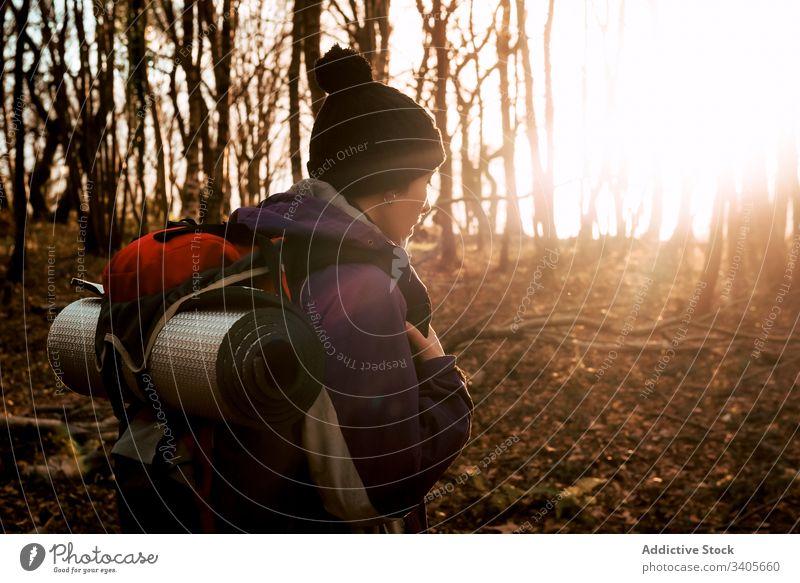 Backpacker-Trekking im Herbstwald Wald Wanderer Spaziergang Abenteuer Natur Reise Ausflug reisen erkunden Person Umwelt Fernweh Freiheit Feiertag Landschaft