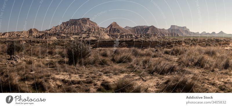 Trockenpflanzen, die in der Wüste wachsen wüst Gras trocknen Berge u. Gebirge Ödland Panorama sonnig tagsüber Natur Landschaft bardenas reales navarre Spanien