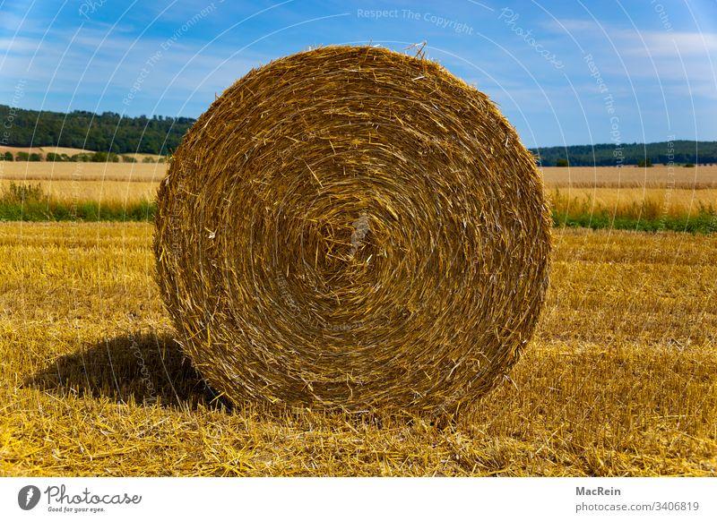 Strohballen strohballen rund landwirtschaft draussen stoppelfeld ernte sommer himmel wolken niemand textfreiraum