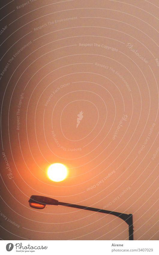 mehr Licht   Leucht- versus Himmelskörper Abendsonne Sonnenuntergang Lampe Straßenlampe Laterne rot Abendhimmel Abenddämmerung Straßenbeleuchtung Beleuchtung