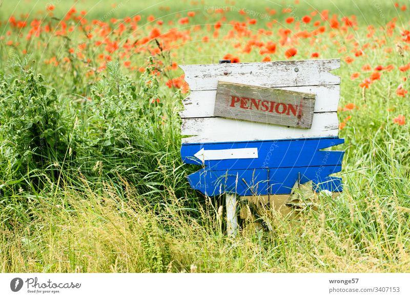 Blau-weiße Holztafel mit einem Hinweis auf eine Pension am Feldrand. Tafel Hinweisschild Hinweise hinweisend Farbfoto Menschenleer Schilder & Markierungen Tag