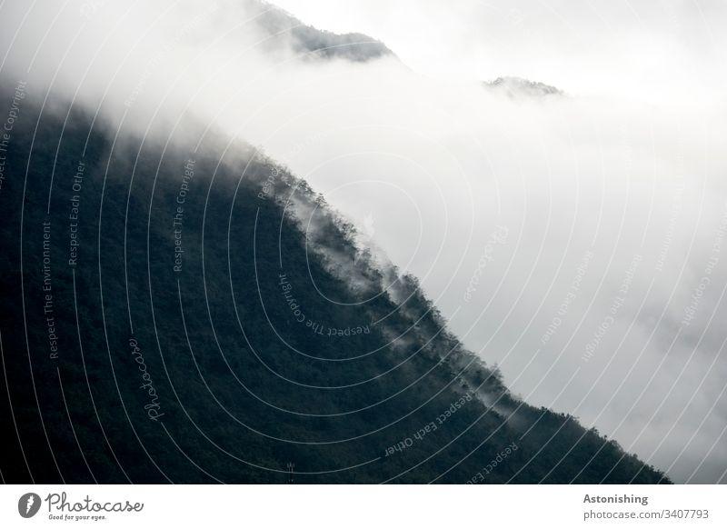 Nebel im vietnamesischen Gebirge Vietnam Sa Pa Sapa Berg Hügel Wald Asien Berge u. Gebirge Natur Landschaft Außenaufnahme Ferien & Urlaub & Reisen wandern