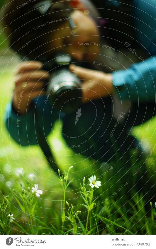 blümchenknipsbild   HELGILAND Mensch Frau Natur grün Pflanze Baum Erwachsene Wiese Freizeit & Hobby Fotokamera türkis Fotografieren hocken fokussieren