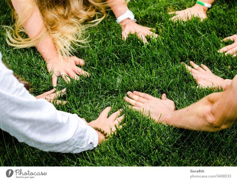 Hände von Menschen nebeneinander auf grünem Gras hell schließen Tag Feld Finger grünes Gras Gruppe von Personen Behaarung Hand Rasen Glied Wiese natürlich Natur