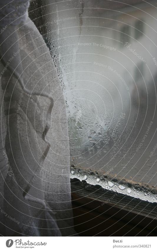 griabig Wohnung Dorf Fenster nass trist grau Stimmung Gardine Vorhang Kondenswasser Bauernhof Fensterblick Bayern Glasscheibe trüb Wassertropfen Farbfoto