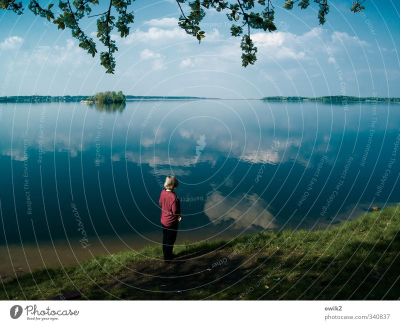 In Gedanken Mensch Frau Himmel Natur Pflanze blau Wasser Erholung Landschaft Wolken ruhig Ferne Erwachsene Umwelt feminin Küste