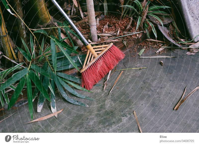 Besen mit roten Borsten neben pflanzen auf grauem Steinboden Garten Fegen Laub Pflanzen Blätter grün Boden tropisch südländisch Gartenarbeit Ordnung putzen