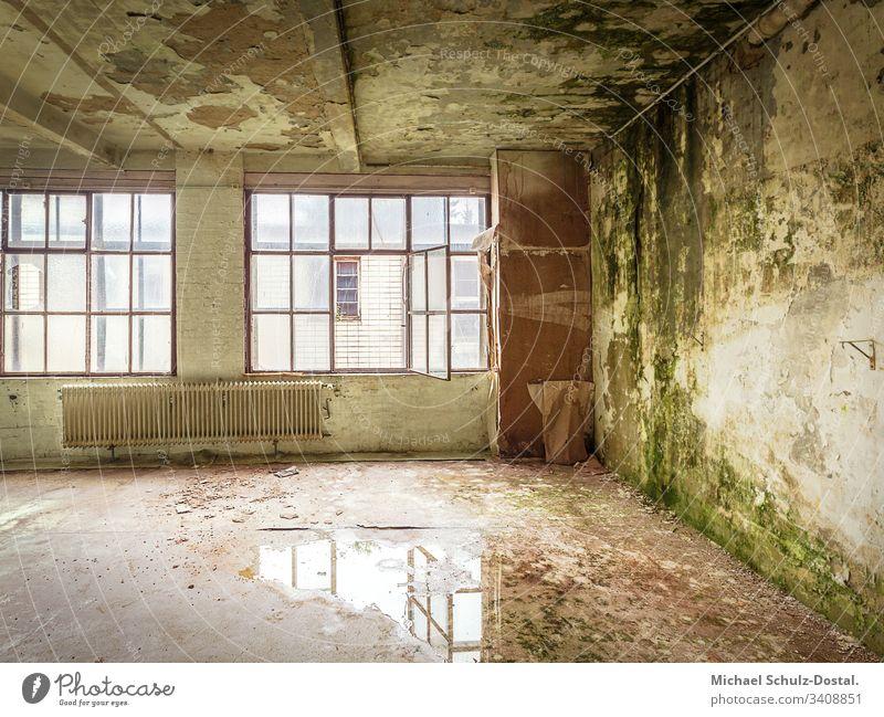 Green Room - Tapetenfabrik Norta Langenhagen Lost place urbex abandoned verlassen ruine lost marodes