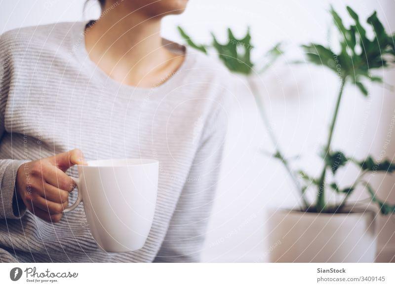 Handgehaltene Kaffeetasse Becher Beteiligung Hände heiß Tasse Tee Frau trinken warm Mädchen Winter Lifestyle Pflanze weich Licht Fensterblätter Blatt Blätter