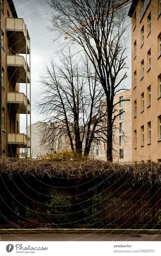 Berliner Hinterhof altbau hinterhaus hinterhof wohnhaus wand mauer brandmauer wohngebiet wohnen stadt innenstadt textfreiraum mietshaus mehrfamilienhaus