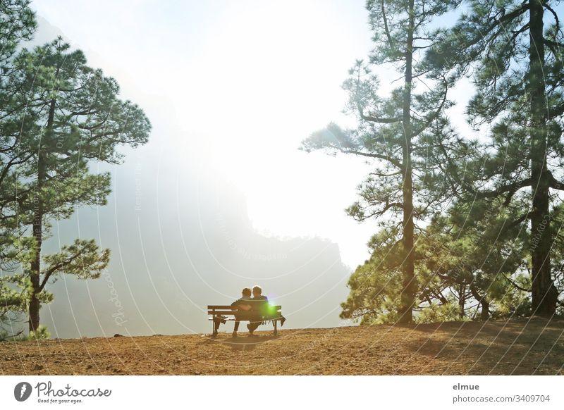 Blick auf die Caldera de Taburiente La Palma erholen relaxen Ausblick Bank Wanderer wandern Urlaub Wandergebiet Baum Gegenlicht Licht lichtdurchflutet Ferne