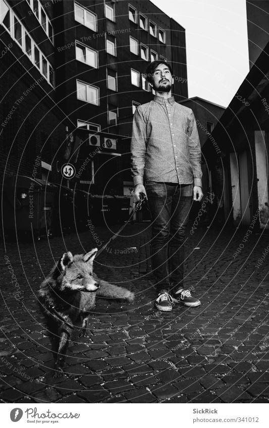 Urbaner Rotfuchs Mensch Mann Jugendliche Stadt Tier Erwachsene kalt 18-30 Jahre Stil Mode maskulin Wildtier elegant Lifestyle Bekleidung ästhetisch