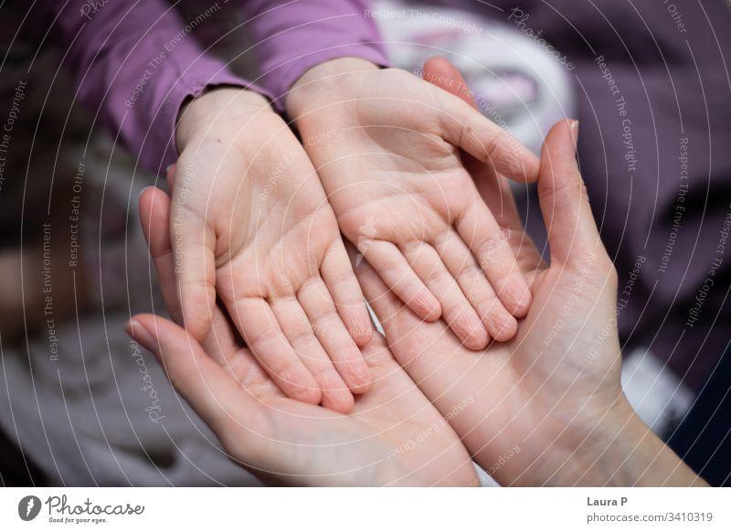 Mutter hält die Hände der Tochter in den Händen Sicherheit sicher verbunden schön Eltern Beteiligung Mama Erwachsener Kind Liebe Pflege fürsorglich Frau