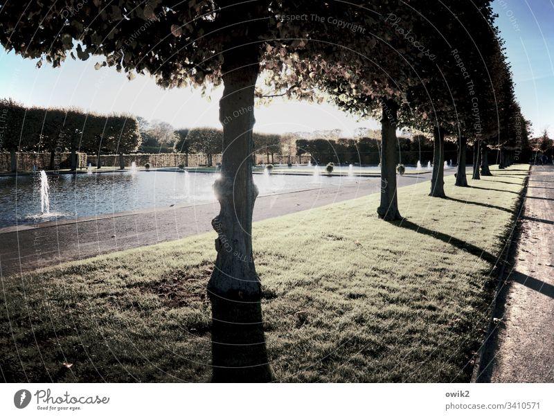 Promenade mit Seeblick Hannover Park vornehm Herrenhäuser Gärten Sehenswürdigkeit sehenswert schönes Wetter Garten Landschaft Baum Licht Menschenleer Natur