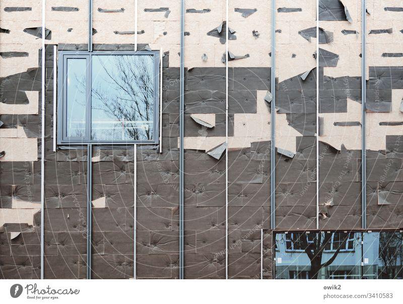 Verwandlung Wand Fassade Baustelle halbfertig Fenster Wärmedämmung Glas Kunststoff Streifen fest Außenaufnahme Farbfoto Haus Menschenleer Gebäude Tag Linie