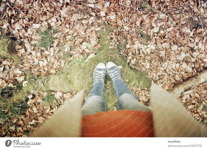 halbe suschaa feminin Mädchen Junge Frau Jugendliche Erwachsene Beine Fuß 1 Mensch 18-30 Jahre 30-45 Jahre Umwelt Herbst Winter Moos Blatt Wald stehen