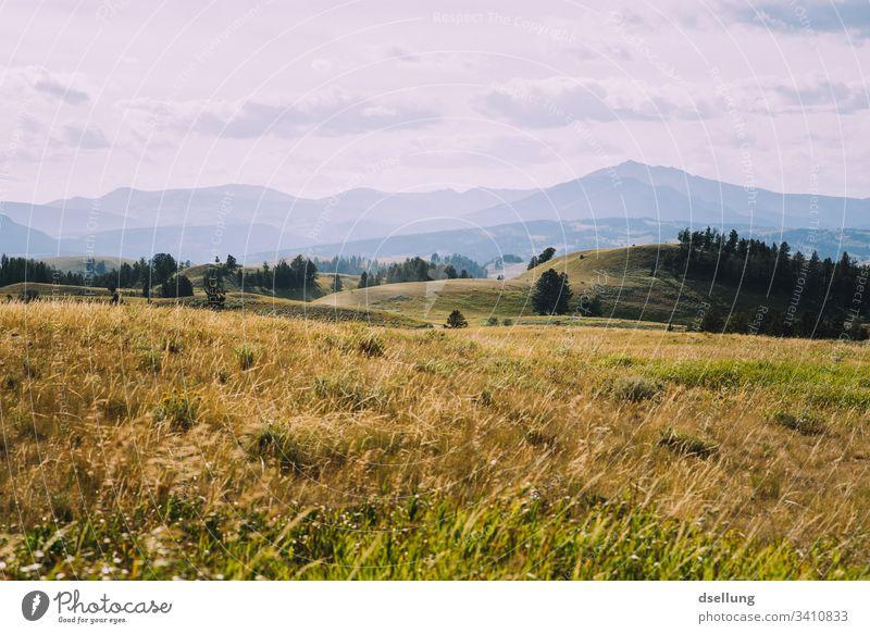 Hügelige Landschaft über mehrere Schichten mit Wiese im Vordergrund grün Idylle Ruhe Gelassenheit Berge Erholung Außenaufnahme Ferien & Urlaub & Reisen Farbfoto