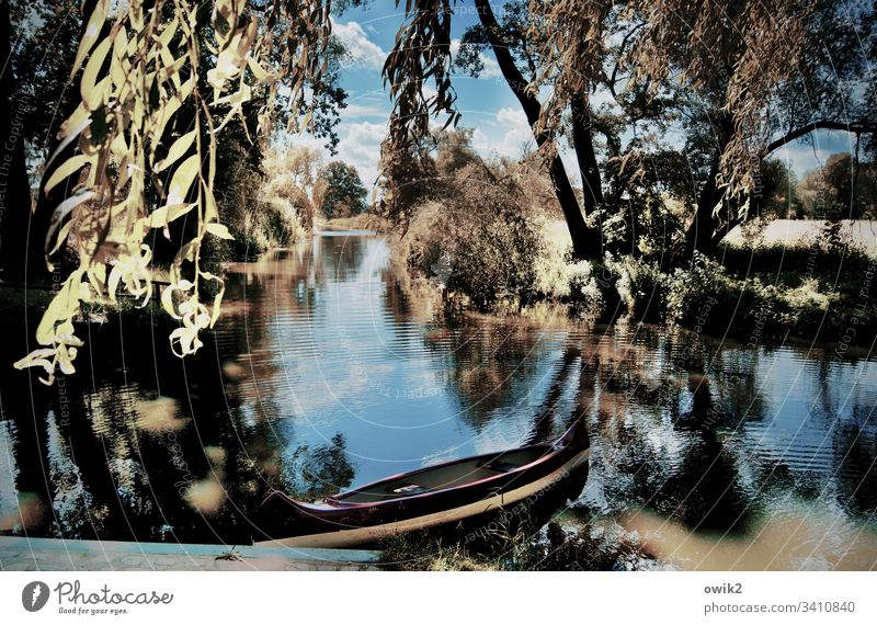 Kleiner Spreewald bei Wahrenbrück Landschaft Fluß Ruhe Stille friedlich Idylle Wasser Boot Ruderboot Baum Zweig Reflexion & Spiegelung ruhig Menschenleer Umwelt