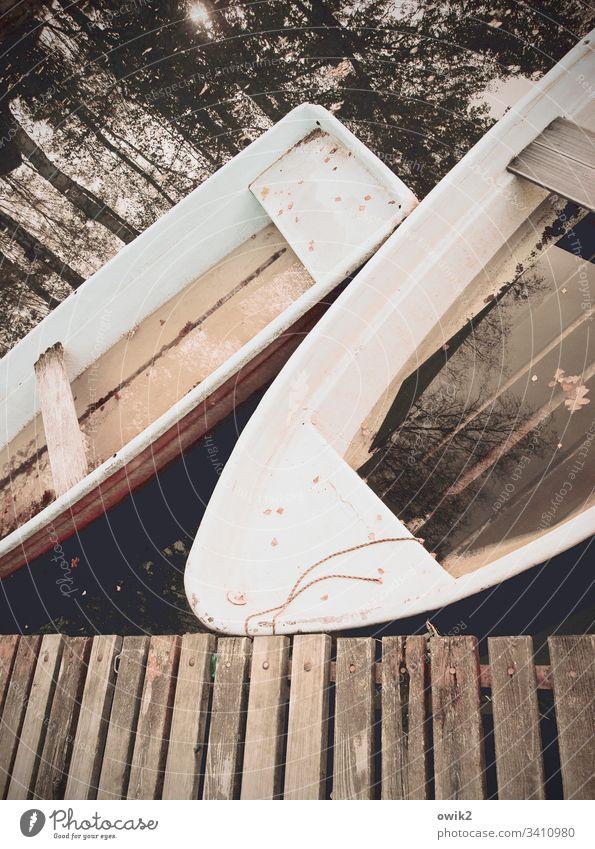 Ruhestand Boote Bootssteg Wasser See Spiegelung Pause Feierabend Idylle WasserSpiegelung Bäume Seeufer Natur Außenaufnahme Farbfoto Wald Wasseroberfläche Himmel