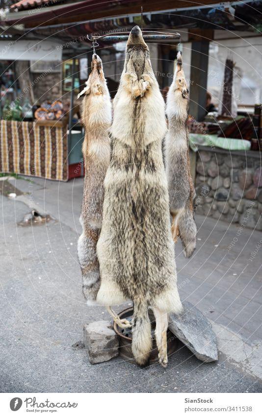 Felle von Wölfen Wolf Haut wild Tier Jagd braun Häute Behandlung Behaarung Füchse grau Feder Bär Hirsche Tiere Natur Fairness peta ethische Fallenlegung