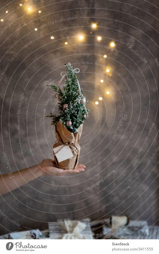 Frauen halten in der Hand einen kleinen geschmückten Weihnachtsbaum niedlich Pflanze wenig Ball Lichter Beleuchtung Zapfen Dekor Single Weihnachten Winter