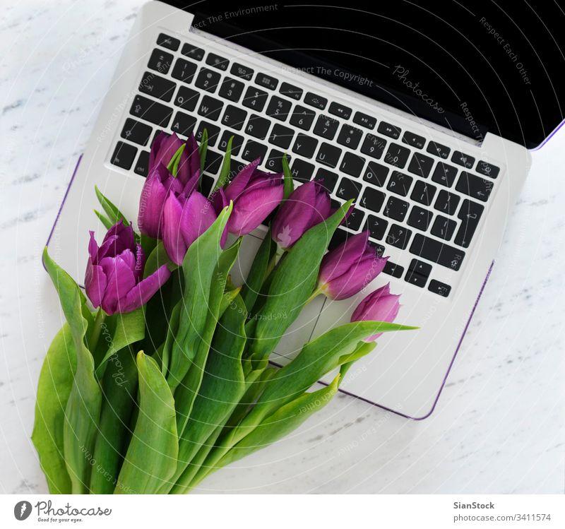 Computer mit einem Strauß violetter Tulpen Laptop Hintergrund Frühling weiß Design Business Büro Schreibtisch Raum Arbeit Blumenstrauß Tisch natürlich nach oben