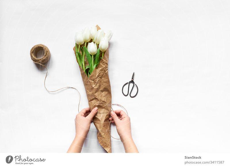 Frau macht Tulpenstrauß vereinzelt weiß Hintergrund Tag Blumenstrauß Schere Frühling Natur grün schön Mütter Raum Haufen Schönheit Geschenk geblümt Pflanze