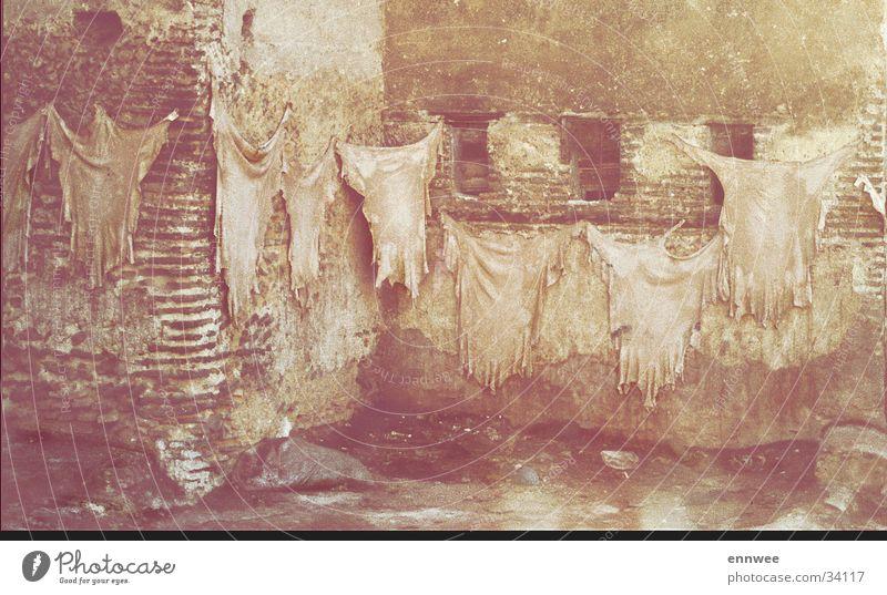 Marrakesch-Gerberei Marokko Handwerk Medina Moral Lederherstellung