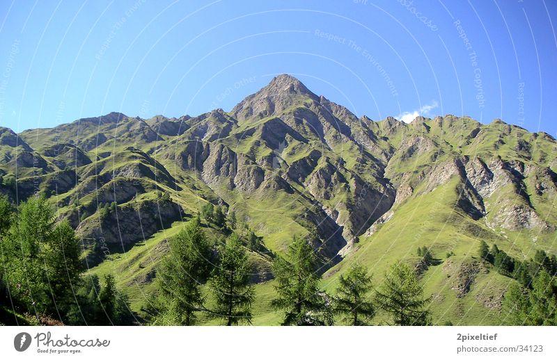 Painted Mountain Baum grün blau Berge u. Gebirge braun hoch Alpen