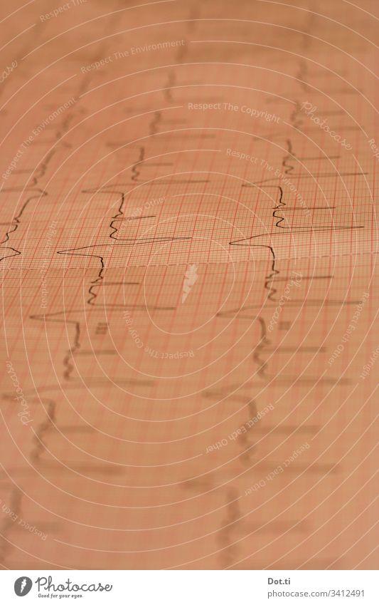 EKG Kurve Kardiologie Herzschlag Herz-/Kreislauf-System Arzt medizinisch Aufzeichnung überprüfen Papier