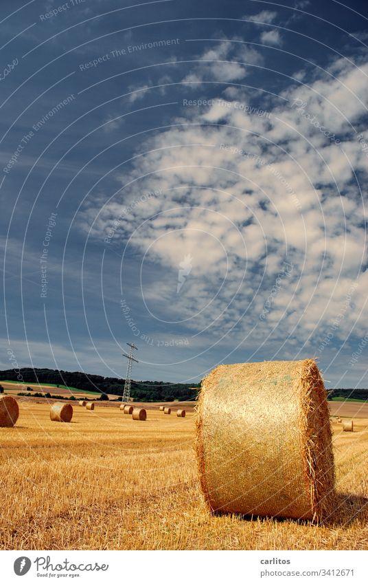 Strohrollen halten Mindestabstand ein Strohballen Landwirtschaft Sommer Herbst Feld Landschaft Wolken Ernte gelb Getreide Wärme Schönes Wetter Nutzpflanze Gold