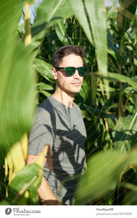 Junger Mann mit Sonnenbrille auf der Innenseite eines Maisfeldes Boden Laubwerk im Freien Person Menschen Blatt Nahaufnahme Ackerbau Reihe panoramisch Saison